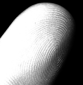 fingerprint-impronte-digitali